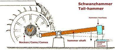 Schwanzhammer